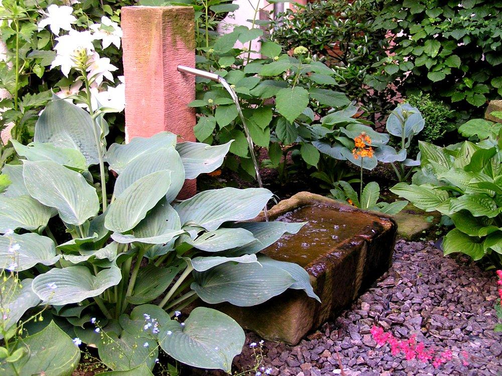 Gartengestaltung: Schattenpflanzung mit Hosta sieboldiana 'Blue Angel', Hortensien, Sandsteinbrunnen