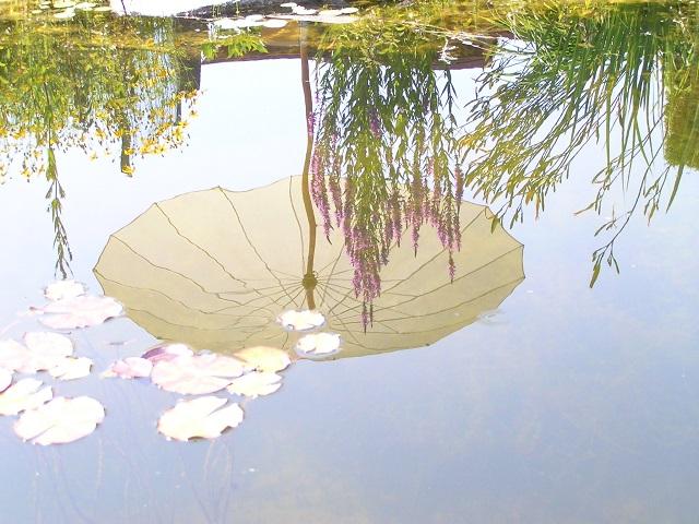 Gartenteich Sonnenschirm Siamschirm