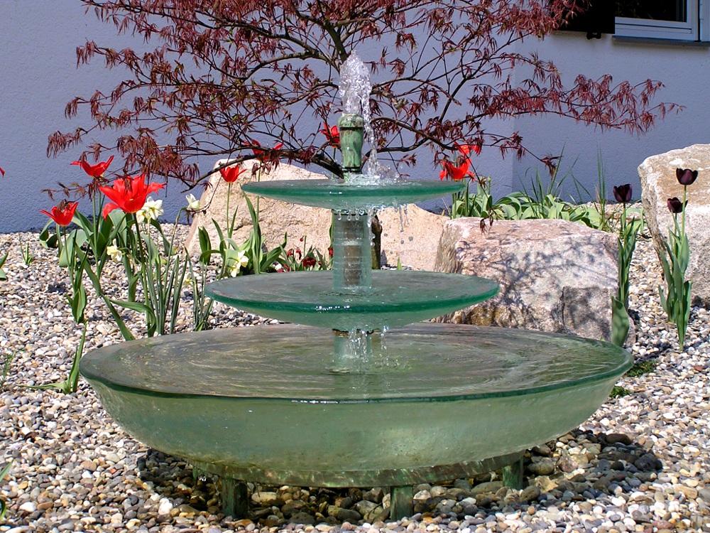 Kiesgarten Wasserspiel, Acer dissectum 'Atropurpureum', Rotblättriger Schlitzahorn
