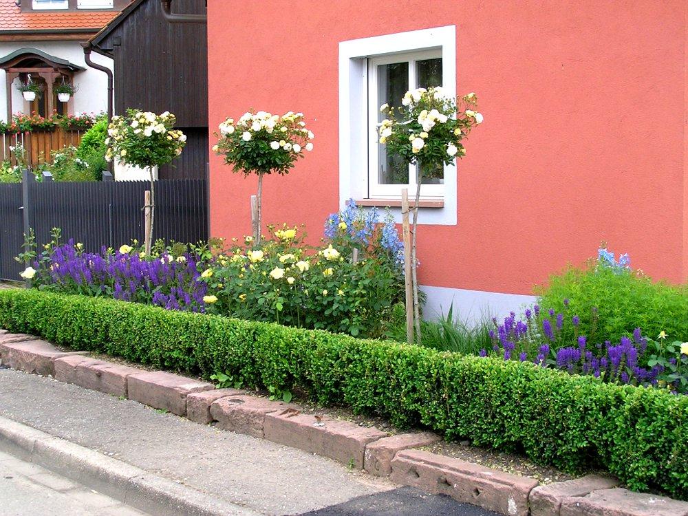 Gartengestaltung Bauerngarten Rosengarten Hochstamm-Rosen Rosen-Begleitstauden