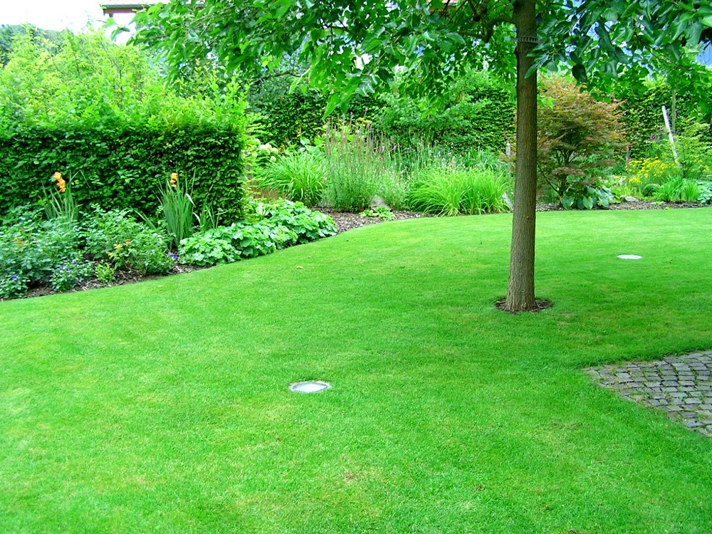 Gartenpflege: Rasenpflege und Heckenschnitt
